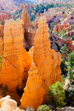 Hoodoos in Bryce Canyon NP Stock Images