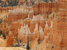 Hoodoos of Bryce Canyon Utah Stock Photos