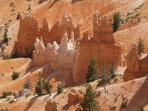 Hoodoos. Within Bryce Canyon, Utah, with scattered high desert vegetation Stock Photography