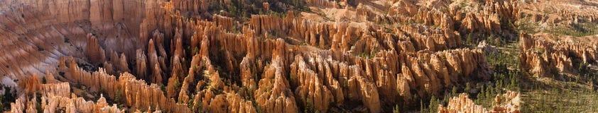 Hoodoos dans le panorama de gorge de Bryce Image stock