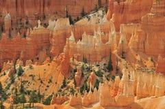 Hoodoos del canyon di Bryce Fotografie Stock