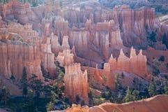 Hoodoos del canyon di Bryce Fotografia Stock