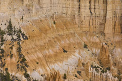 Hoodoos details  of Fairyland Point Royalty Free Stock Photo