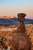 Hoodoos in early morning light in Bryce Canyon National Park. Orange and pink hoodoos in early morning light, Bryce Canyon National Park, Utah Stock Image