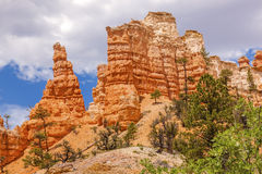Hoodoos Fairyland Bryce Canyon National Park Utah Royalty Free Stock Images
