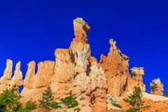 Hoodoos i den Bryce kanjonen Arkivbild