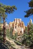 Hoodoos on Mossy Creek Trail royalty free stock photos