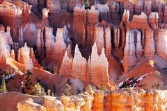 Hoodoos przy Bryka jaru parkiem narodowym, Utah Fotografia Royalty Free