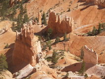 Hoodoos. Rise up from the floor of Bryce Canyon, Utah Stock Photography