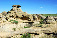 Hoodoos and sandstone field Royalty Free Stock Images