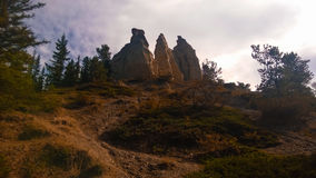 Hoodoos. Tree forest banff valley PhotoShop color filter Royalty Free Stock Image