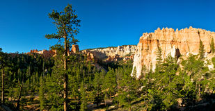 Hoodoos in the Valley of the Pines Royalty Free Stock Image