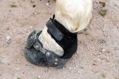 USA, Arizona: Hoof Boot for Desert Rides Royalty Free Stock Photography