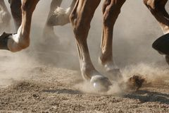 Hoof Dust. The hooves of horses running through the dust.  (shallow focus Royalty Free Stock Photos