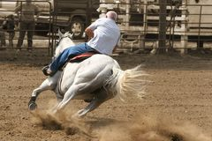 Hoof Dust. Rounding the corner in a race against time - county fair in Illinois, USA royalty free stock photo