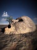 Hoofd 1 van de steen stock illustratie