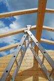Hoofd Binnenlandse Straal en Ladder Stock Foto's