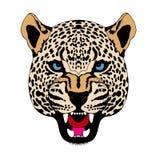 Hoofd het gezichts realistische kleur van de sneeuwluipaard Royalty-vrije Stock Afbeelding