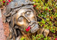 Hoofd met doornen van Jesus Christ wordt bekroond dat stock afbeeldingen