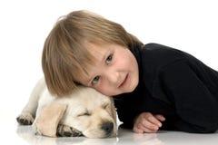 Hoofd op puppy stock afbeeldingen
