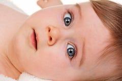 Hoofd portret van een jong kind royalty-vrije stock foto