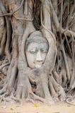 Hoofd van Boedha in Wat Mahathat stock afbeelding