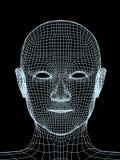 Hoofd van de persoon van een 3d net Stock Afbeelding