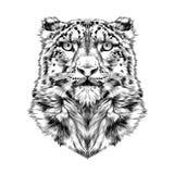 Hoofd van de sneeuwluipaard royalty-vrije illustratie