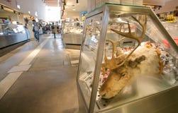Hoofd van een hert in de vleesafdeling van een grote markt van het stadsvoedsel met klanten Royalty-vrije Stock Foto