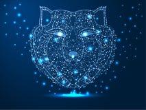 Hoofd van een wolf, jager, dier Abstracte veelhoekige illustratie op donkerblauwe achtergrond met sterren met destructvormen stock foto's