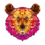 Hoofd van grizzly in geomeyric patroon vector illustratie