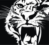 Hoofd van wilde kat vector illustratie