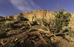 Hoofdertsader Nationaal Park in de Lente Royalty-vrije Stock Foto