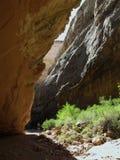 Hoofdertsader Nationaal Park, Utah. Stock Afbeelding