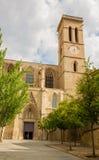 Hoofdmanresa van de ingangskathedraal toren Stock Foto