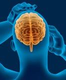 Hoofdpijn x-ray aftasten van menselijk hoofd met zichtbare hersenen Stock Fotografie