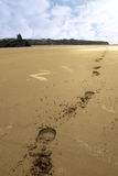 Hoofprints de plage de Ballybunion Image libre de droits