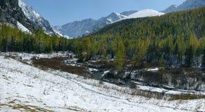 Hoog-bergachtige vallei. Royalty-vrije Stock Afbeeldingen