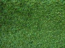 Hoog gedetailleerd gras royalty-vrije stock afbeelding