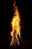 Hoog geel vuur Stock Foto's