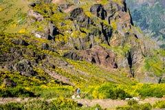 Hoog het lopen op Pico do Arieiro, bij 1.818 m, is het eiland` s derde hoogste piek van Madera Royalty-vrije Stock Afbeelding