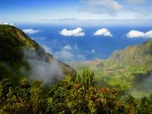 Hoog-hoekmening de vallei van van Kauai, Hawaï royalty-vrije stock foto