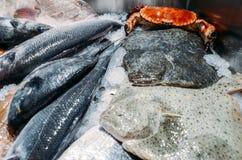 Hoog Hoekstilleven van Verscheidenheid van Ruwe Verse Vissen met inbegrip van Ray Fish Chilling op Bed van Koud Ijs in Zeevruchte royalty-vrije stock afbeeldingen