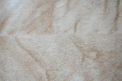 Hoog - kwaliteits beige marmer stock foto's