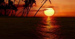 Hoog - kwaliteits volkomen naadloze lijn van overzeese oceaangolvenbeweging op zonsondergang met palmeiland op achtergrond vector illustratie