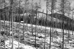 Hoog plattelandshuisje Tatras Royalty-vrije Stock Afbeeldingen