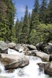 Hoog Tatras - Slowakije - watervallen Royalty-vrije Stock Afbeeldingen