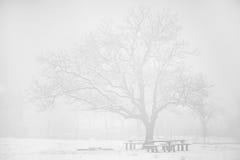 Hoog zeer belangrijk de winterlandschap Royalty-vrije Stock Afbeeldingen