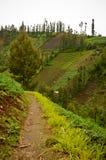Hooglanddorp in Java, Indonesië Royalty-vrije Stock Foto