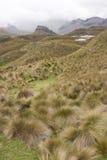 Hooglanden van Ecuador Royalty-vrije Stock Foto's